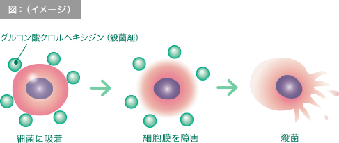 図:高い殺菌力(イメージ)